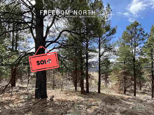 Residential lot in Pagosa Springs, CO