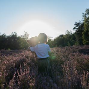 Golden hour shoot op de paarse hei in Brabant