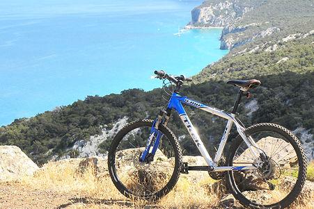 mountainbike.jpg