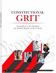 constitutional grit mini book.jpg