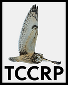 TCCRP.png