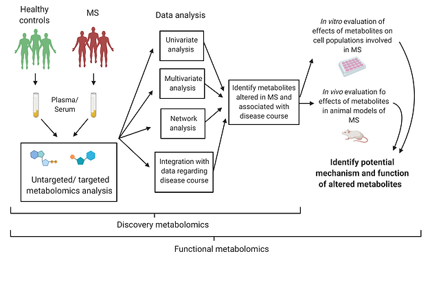 Functional metabolomics overview.png