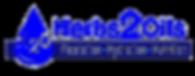 h2o logo.png