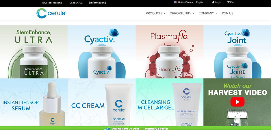 Cerule wellness webpage.JPG