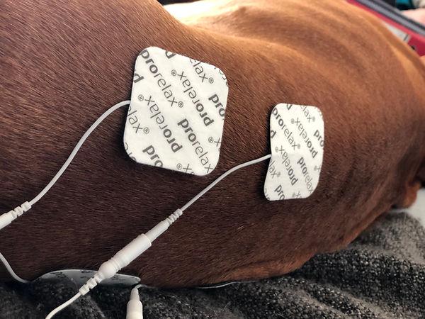 Elektro-Therapie