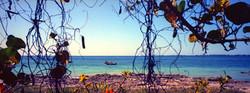 Залив на Карибском море