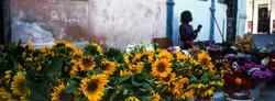 Рынок в Гаване