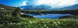 Альпика Кавказа
