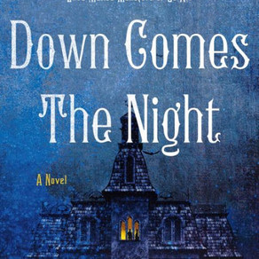Book Review: Down Comes the Night
