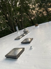 Skylights on a flat roof