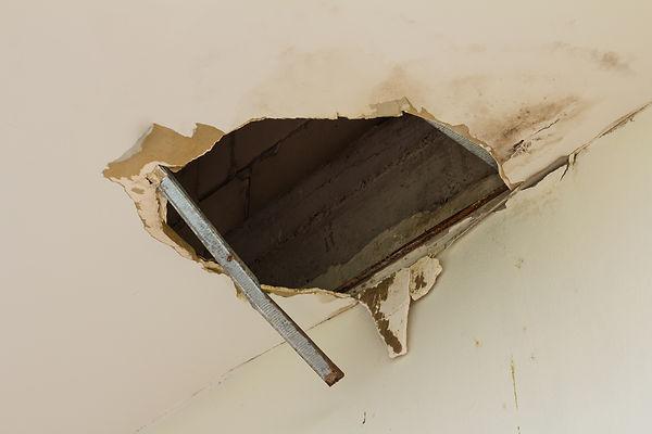 ceiling_damage.jpg