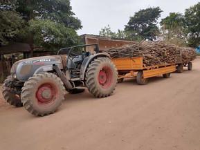 Durante un operativo secuestran importante cantidad de producto forestal