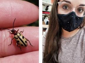 Sol Qupildor, la Salteña reconocida mundialmente por encontrar un escarabajo