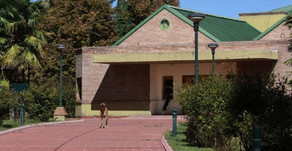 #Mendoza Un monaguillo que admitió 11 abusos a niños es el primer condenado por el caso Próvolo