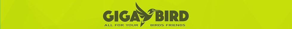 bandeau-bird.jpg