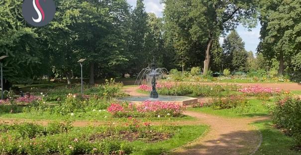 La fontaine située au centre de fleurs au parc Napoléon
