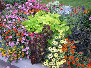 utah flower planting, utah landscaping, landscaping in provo