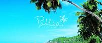 pailea.png