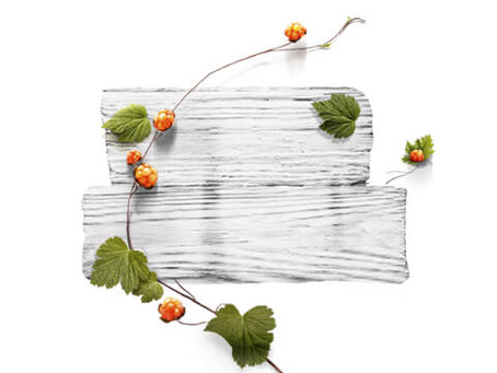 Barnängen, produse de ingrijire a pielii inspirate de minunatiile Suediei
