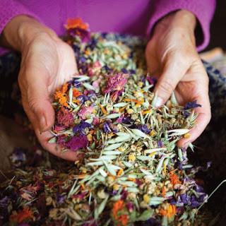 Terapia farmacologica, plantele si alimentele