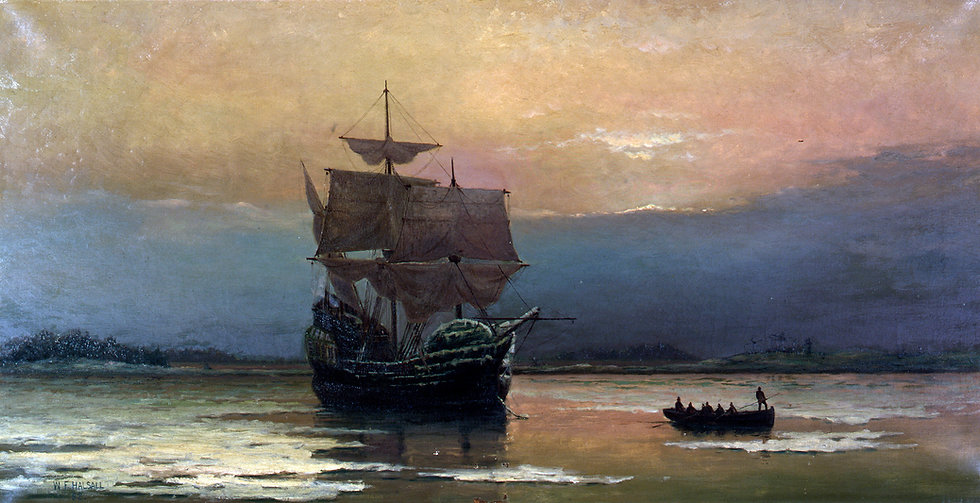 CapeCodDAR The Mayflower GoFundMe.jpg