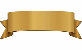 CapeCodDAR Gold Banner.png