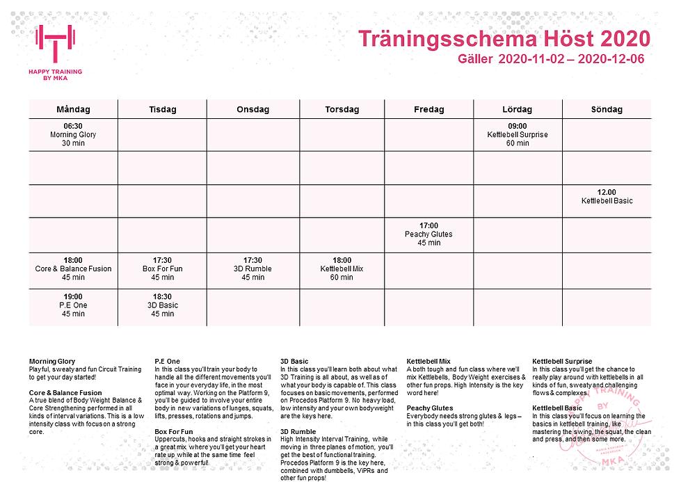 SCHEMA_Höst_2020_2.png