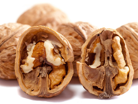 Walnuts and your Brain