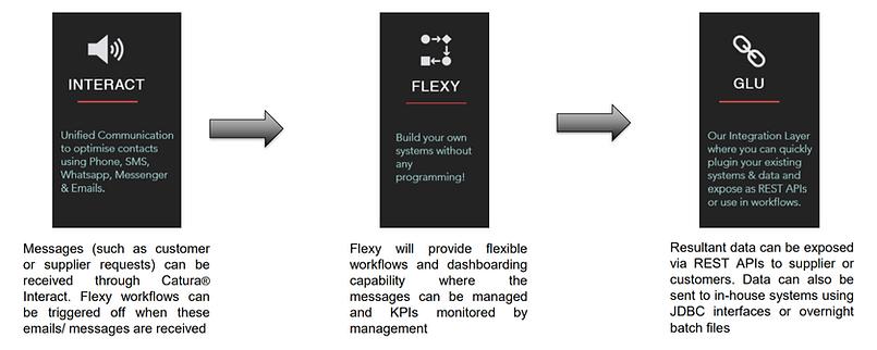 Flexy advances case.PNG