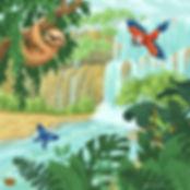 rainforest-kit-box-download.jpg