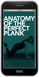 PLANK.png