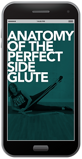 GLUTE.png