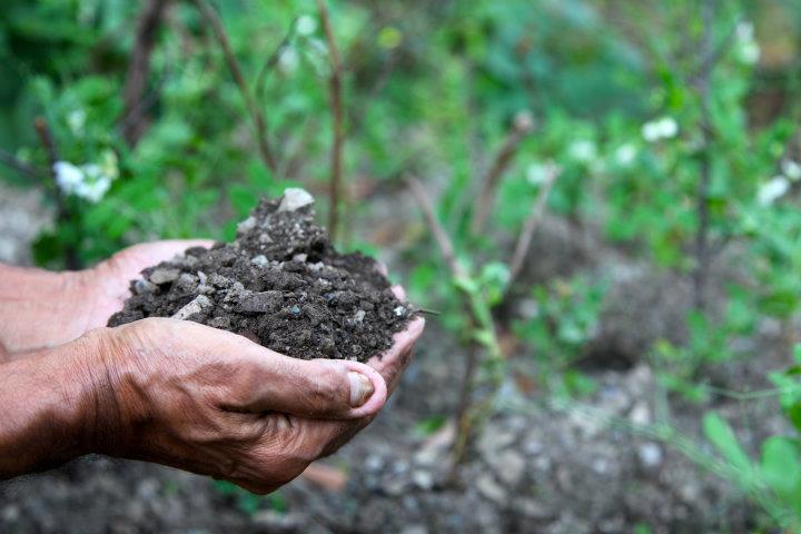 soil_care.jpg