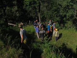 forest_walk_group.jpg