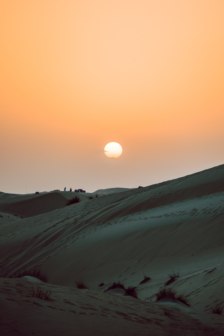 Dubai 2020 - 1500px 116.jpg