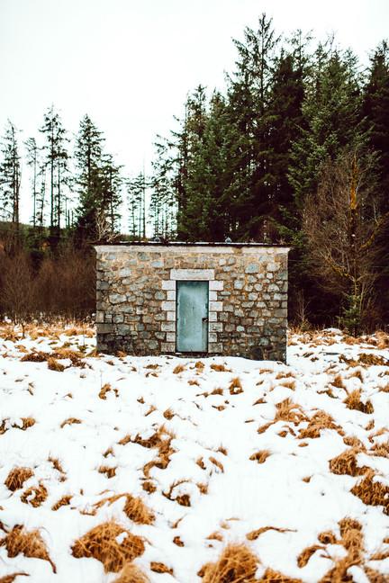 Finlas Forest Feb 2020 1500px 22.jpg