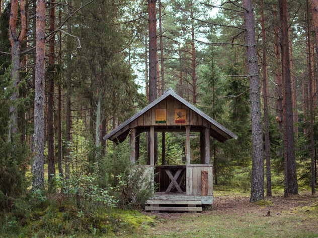 Latvian New Portfolio 3000px 6.jpg