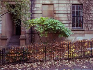 Glasgow West End 3000px 4.jpg