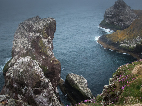National Nature Reserves- Part 2- St. Abbs Head