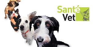 Insurancia assurances pour animaux