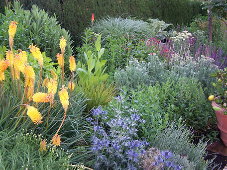 Pollinator-Gardens.jpg