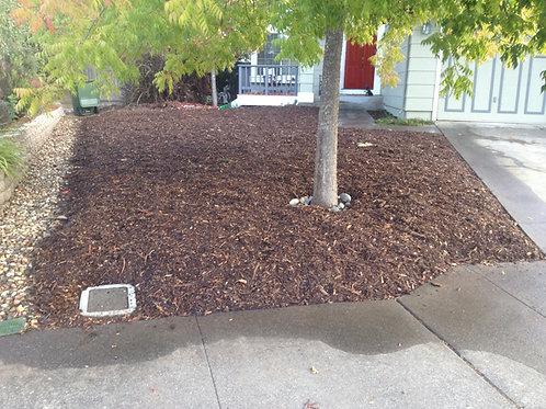 Lawn Gone - Sheet Mulching