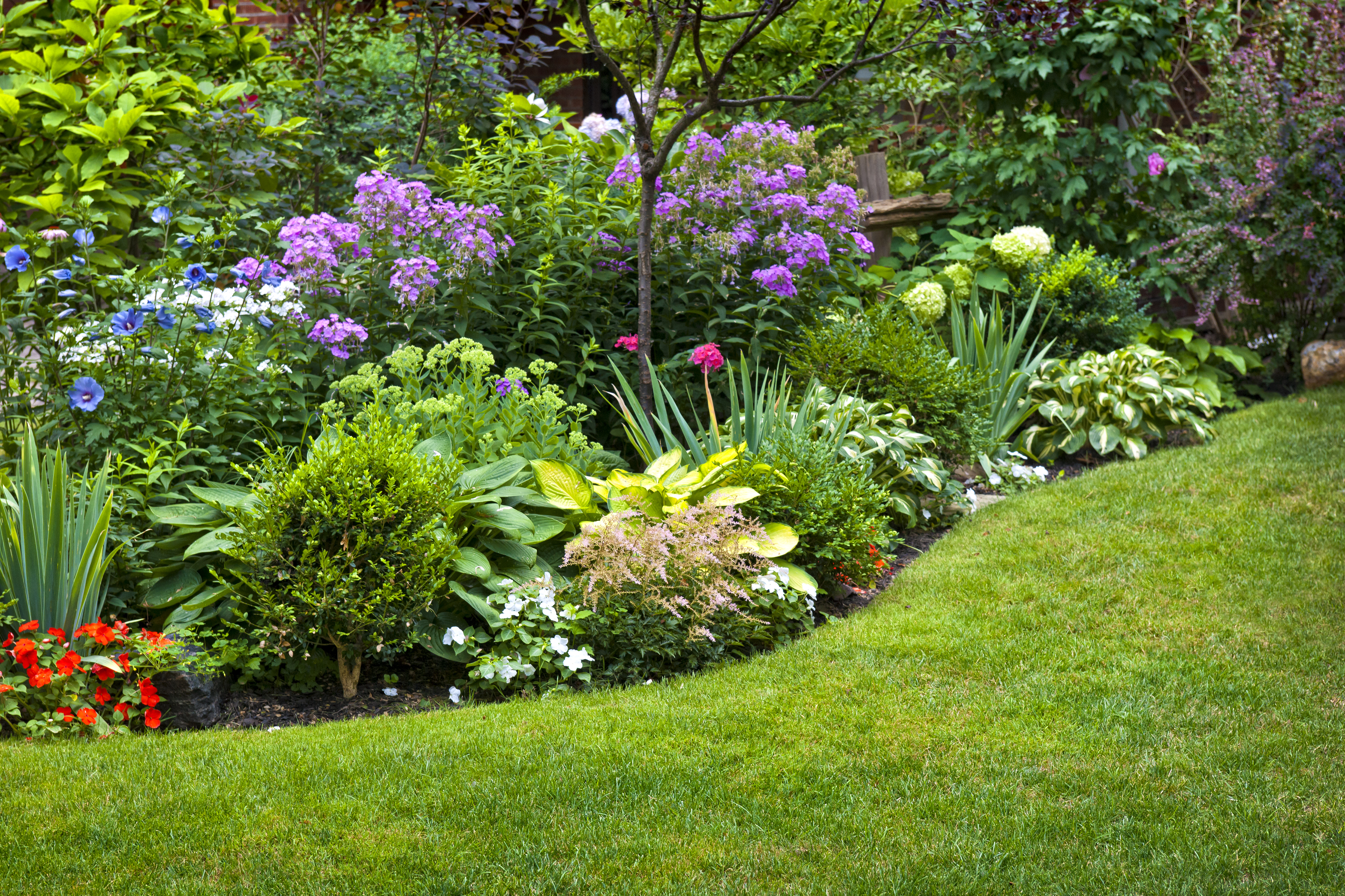 Lush landscaped garden with flowerbed an