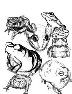 Frog1_Art_May2020.jpg