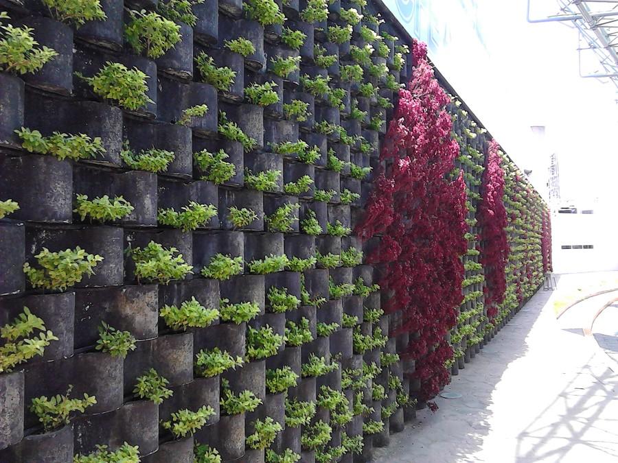 barda con jardinización