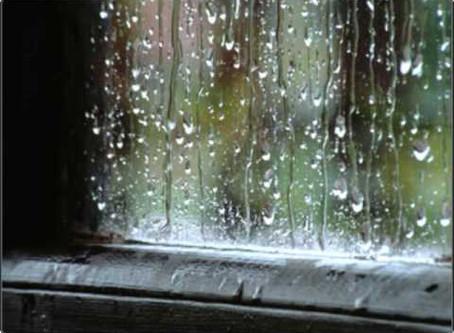 Tiempo de lluvias: ¡Alerta humedad en tus paredes!
