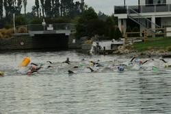 Swim start 2.jpg