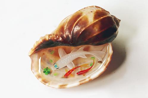 Trumpet Shell Series: White Koi Fish   3D Resin Painting