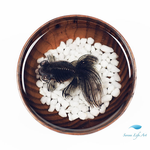 Black Moor Goldfish | Resin Art | Comes with Gift Box