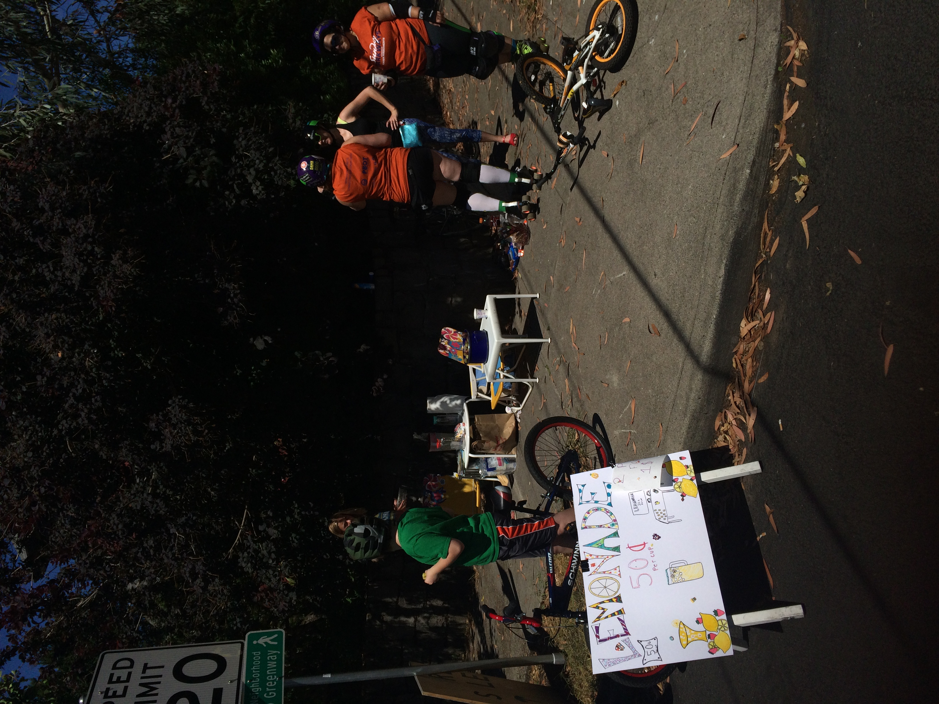 Sunday Parkways July2016-3